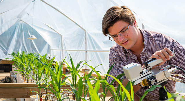 Male student taking plant measurements