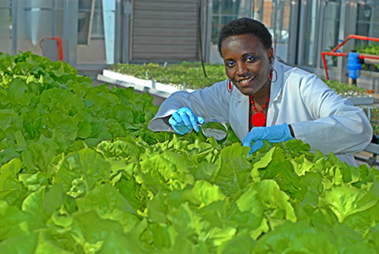 female scientist in greenhouse