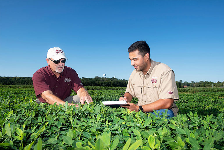 professor and student in soybean field