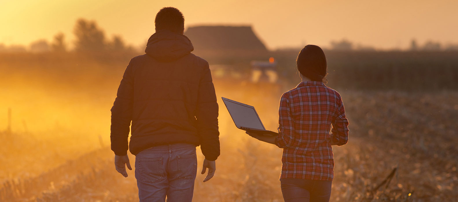 Students walking in field with laptop