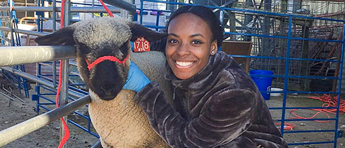Student poses with sheep
